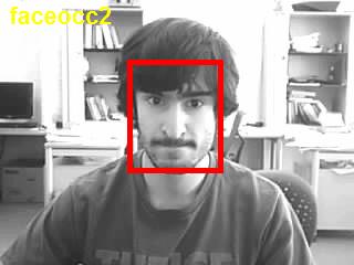 FaceOcc2